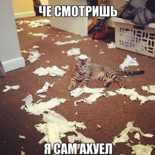 1347955830_kartinki-dlya-nastroeniya-41