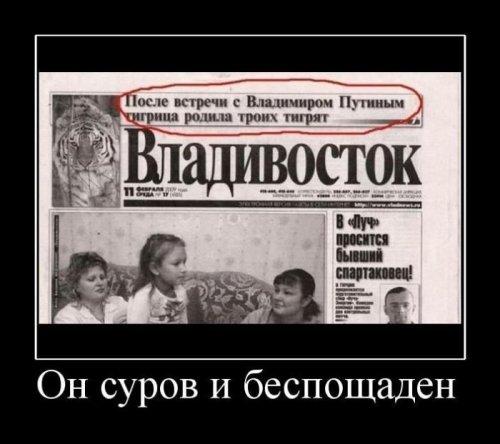 1348015899_demotivatory-23