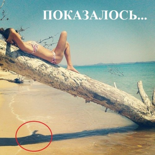 1348212707_prikoly-40
