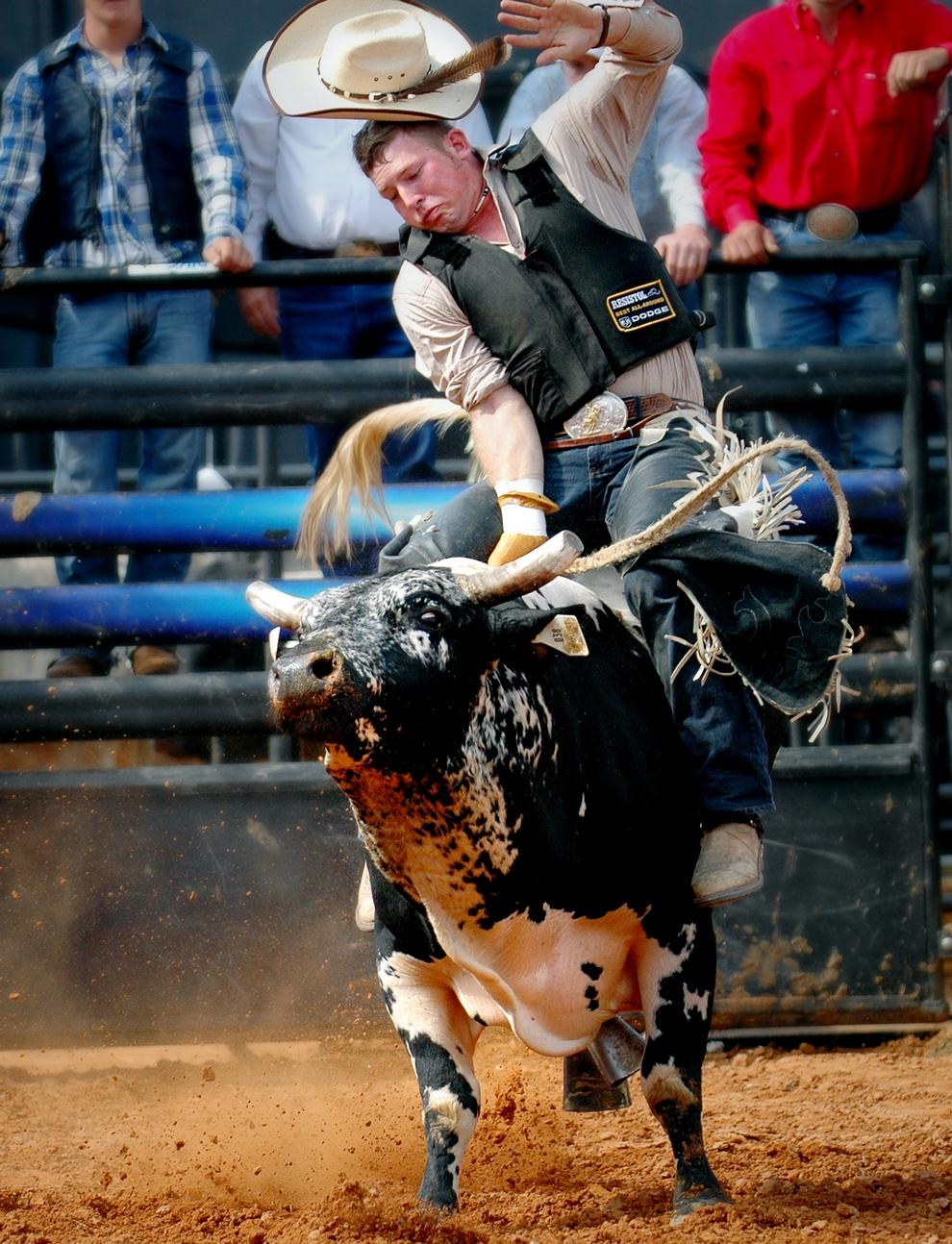 Bull Riding, «Скачки на быках». Проходят в Калгари, Канада. В самый разгар лета Калгари наполняется Бро туристами, приехавшими поглазеть на смельчаков с быками. Один лишь вид животного внушает ужас: еще до выхода на арену бык бьет копытами, и его с трудом сдерживают несколько человек. А те, кто решается запрыгнуть на его спину, отлетают как тряпичные куклы. Большой удачей считается удержаться на быке хотя бы 5 секунд! Победитель же должен провести на спине минимум 8 секунд, что удается единицам.