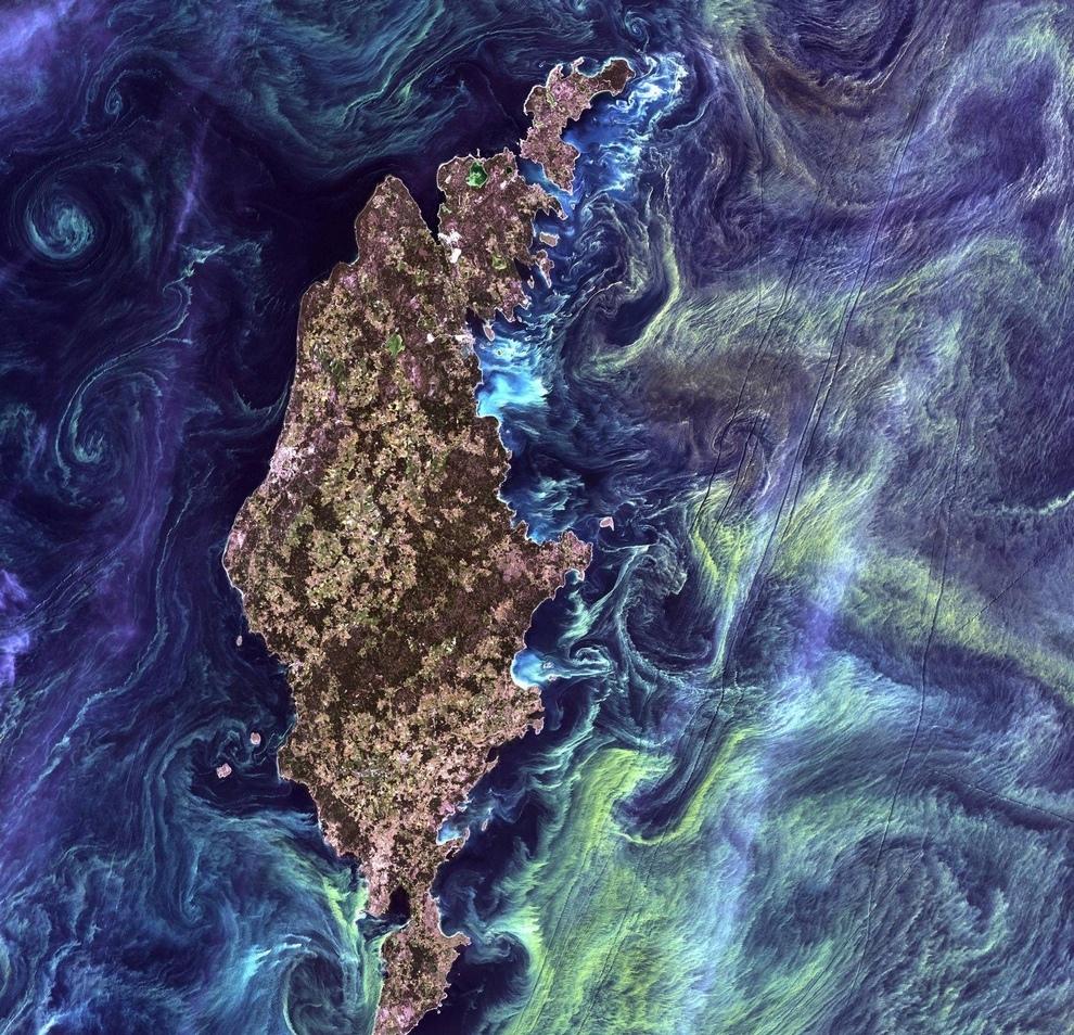 Шведский остров Готланд в окружении фитопланктона.