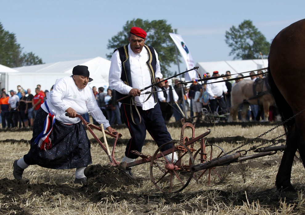 Men work on traditional horse drawn plough as part of a display during the World Ploughing Championship in Vrana