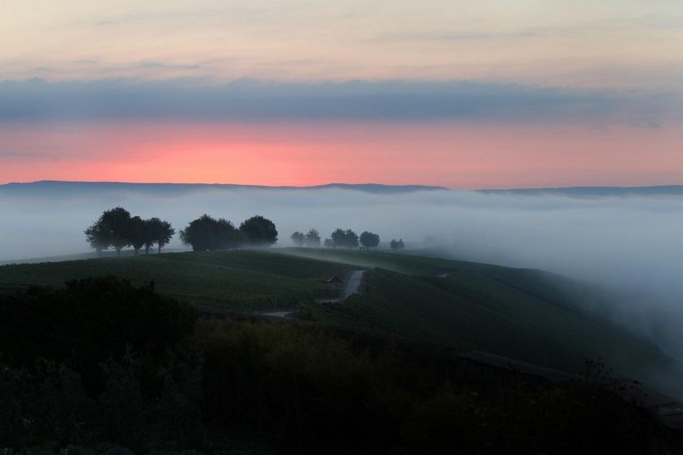 Утро в Эшендорфе, Германия.