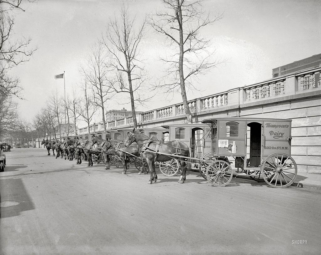 Повозки для транспортировки молочных продуктов Томпсона, Вашингтон, 1927 год.