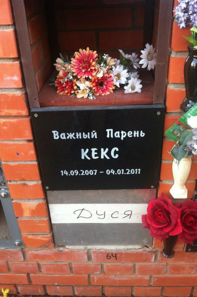 BroDude.ru-1.11.2012.