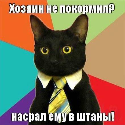 BroDude.ru-2.11.2012.