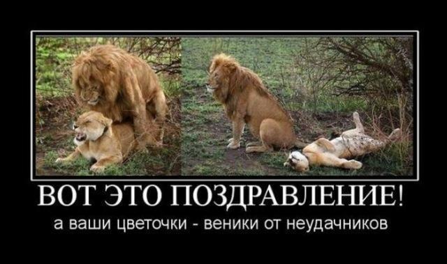 8_marta_16