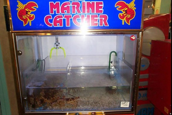 LobsterMachines1613965171