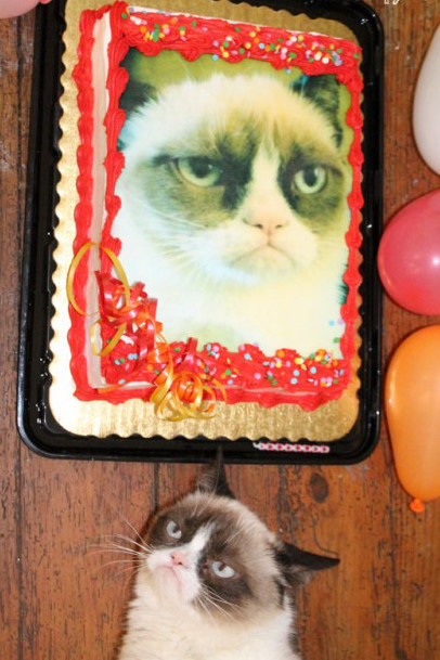 grumpy cat birthday1138214768