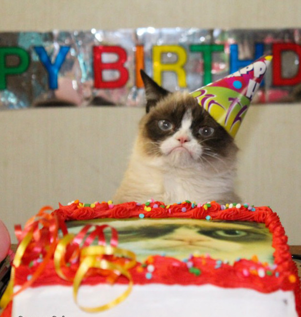 grumpy cat birthday1570335543