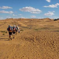 Как выжить в африканской пустыне