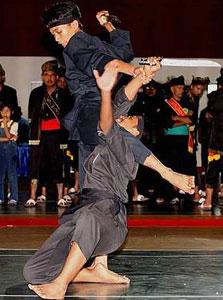 martial-arts1176486162