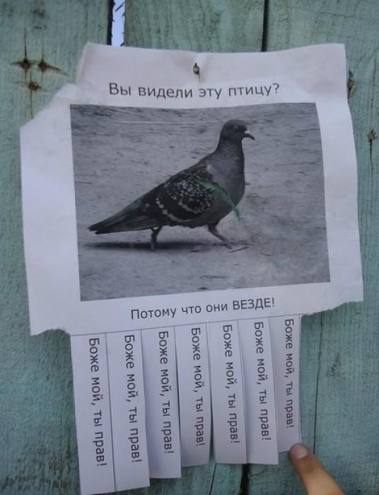 Народный креатив в надписях BroDude.ru smeshnie nadpisi 0743856618