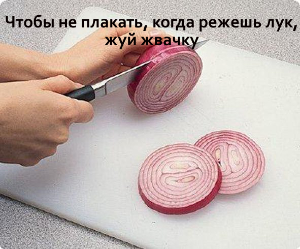 lifehacks 1715531563
