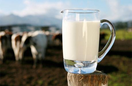 Молоко растит мышцы