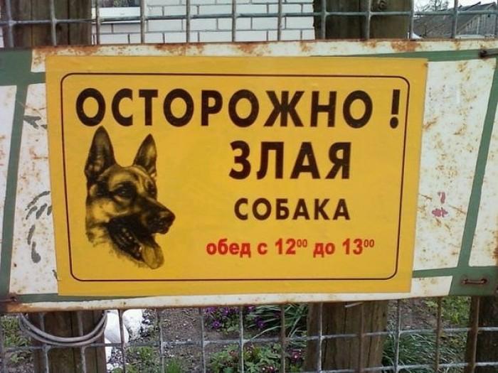 Смешные надписи и народный креатив BroDude.ru smeshnie nadpisi 0073368251