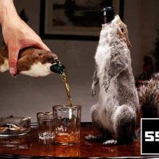 Самое крепкое и странное пиво в мире