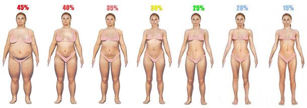 Как определить процент жира у себя в организме BroDude.ru brodude.ru, 25.07.2013, YOKgzYyWNck0HVIJD8qfUaFBgWBYk91O
