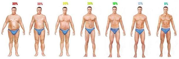 Как определить процент жира у себя в организме   BroDude.ru c97d159cbbe