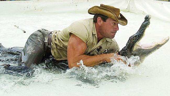 как победить аллигатора