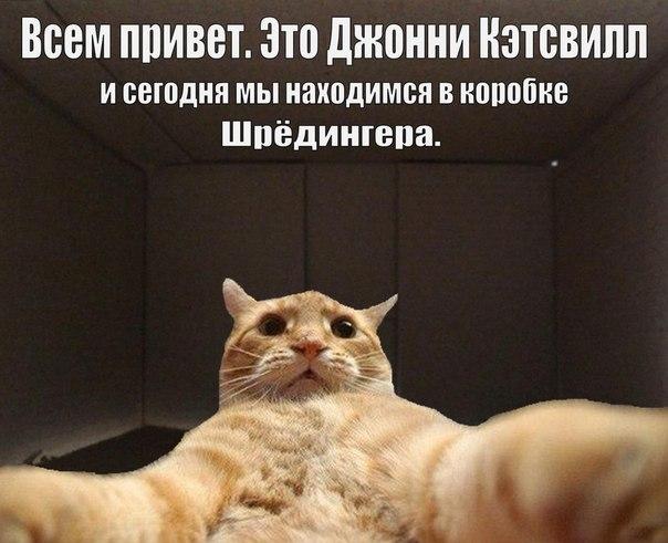 brodude.ru_16.01.2014_ZVPFUhHzqhI0F