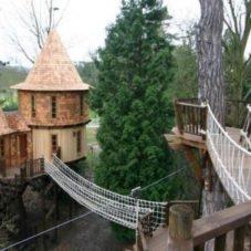 Великолепные дома на деревьях
