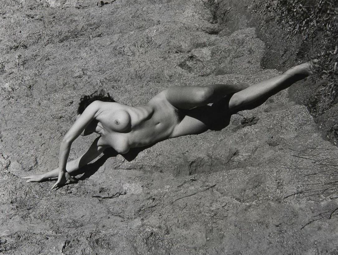Andre birleanu nude photos — img 7