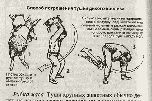 brodude.ru_30.09.2014_onJwE3chpZ7Bi