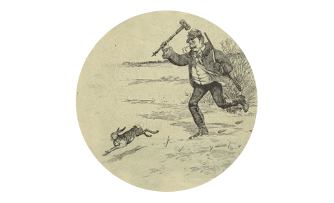 Как правильно потрошить и разделывать кролика
