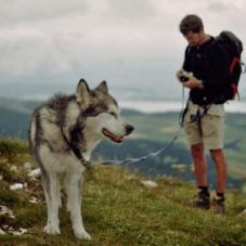 Как изменится твоя жизнь, когда ты заведешь собаку