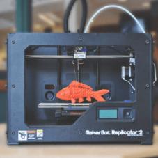 Зачем тебе нужен 3D-принтер