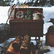 Особенности зимнего пикника: удовольствие в «минус»