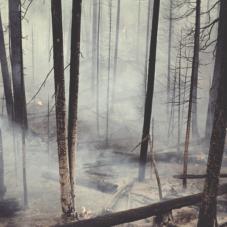 Эмоциональное выгорание — болезнь ответственных людей
