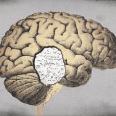 7 самых распространенных ошибок мозга