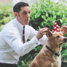 Почему ты должен праздновать дни рождения своей собаки