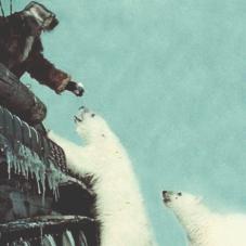 Все, что ты не знал о жизни в Антарктиде