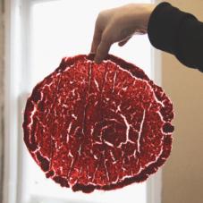 Дегидратор: как и зачем сушить продукты