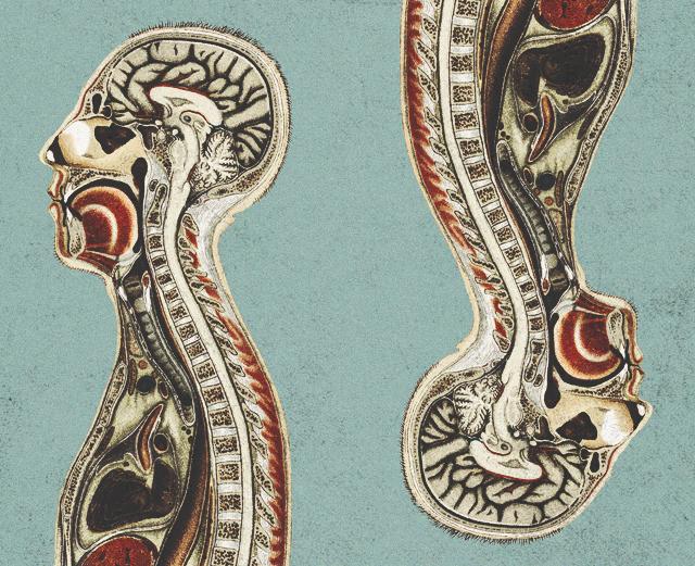 9 главных заблуждений о теле и здоровье