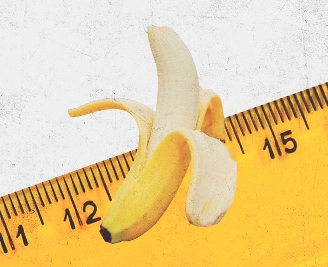 Что влияет на размер пениса